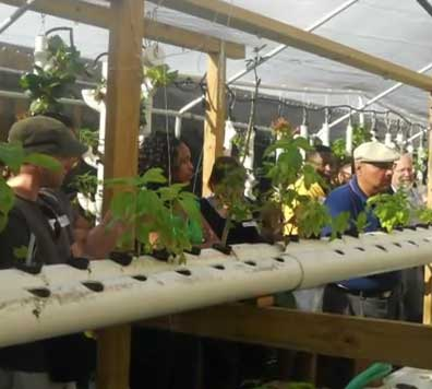2011 Florida Aquaponics Spring Tour- Sahib's Aquaponic Garden-Display