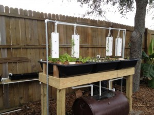 Four Growing Systems one small pump