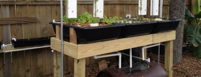 "Sahib Aquaponics Hybrid Urban Growing Systems: Update on ""The Zero Lot / Backyard Gardener"" System"