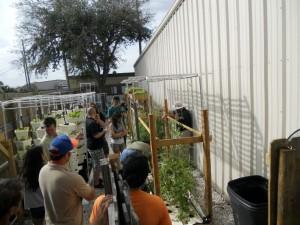 Sahib Aquaponics Research Farm Phase II view